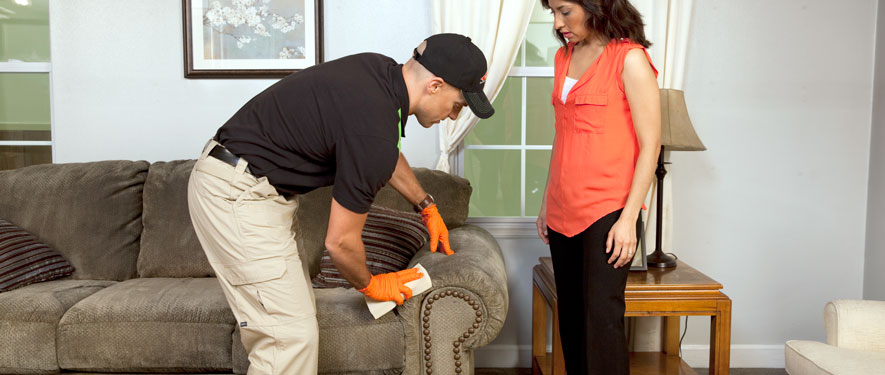 Philadelphia, PA carpet upholstery cleaning